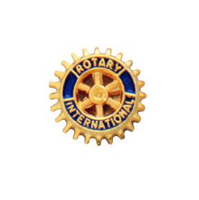 Rotary pin